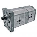 Pompe hydraulique double pour Case Ih