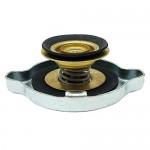 Bouchon de radiateur Case IH (3134146R1, 787151R91)